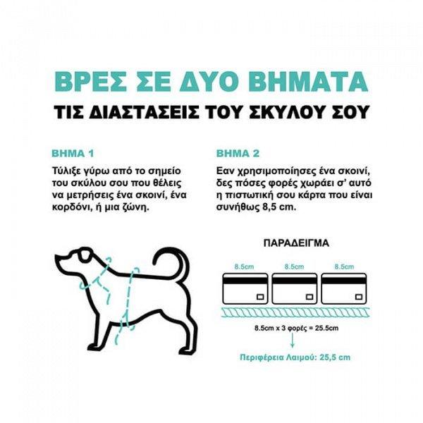 ZeeDog-Περιλαίμιο-για-Σκύλους-Pinna-Extra-Small-5